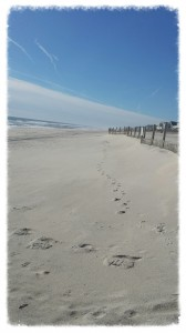 Concierge Services in the Long Beach Island NJ Real Estate Market