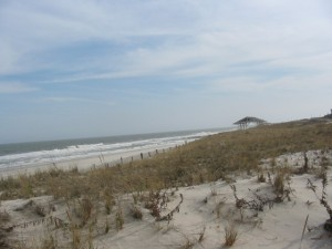 Design Guidelines for New Construction in Beach Haven