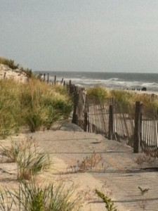 LBI Real Estate Market Trends
