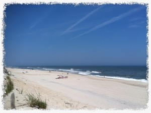 Credit Scores and the LBI NJ Real Estate Market
