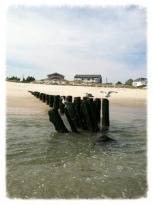 Trends in the Long Beach Island Real Estate Market