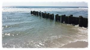 Long Beach Township Summer 2014