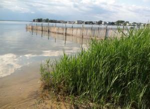 Long Beach Island Beach Replenishment Update
