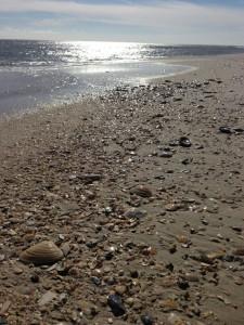 Spray Beach Real Estate Fourth Quarter Sales in 2015