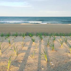 Spray Beach 2016 First Quarter Real Estate Sales