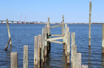 LBI X Zones and Flood Insurance