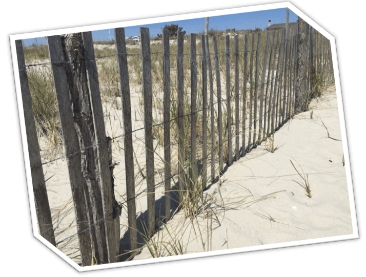 Beach Haven Crest | LBI Real Estate | Long Beach Island Real Estate