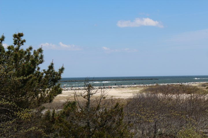 Holgate Real Estate Second Quarter Sales in 2016 on Long Beach Island