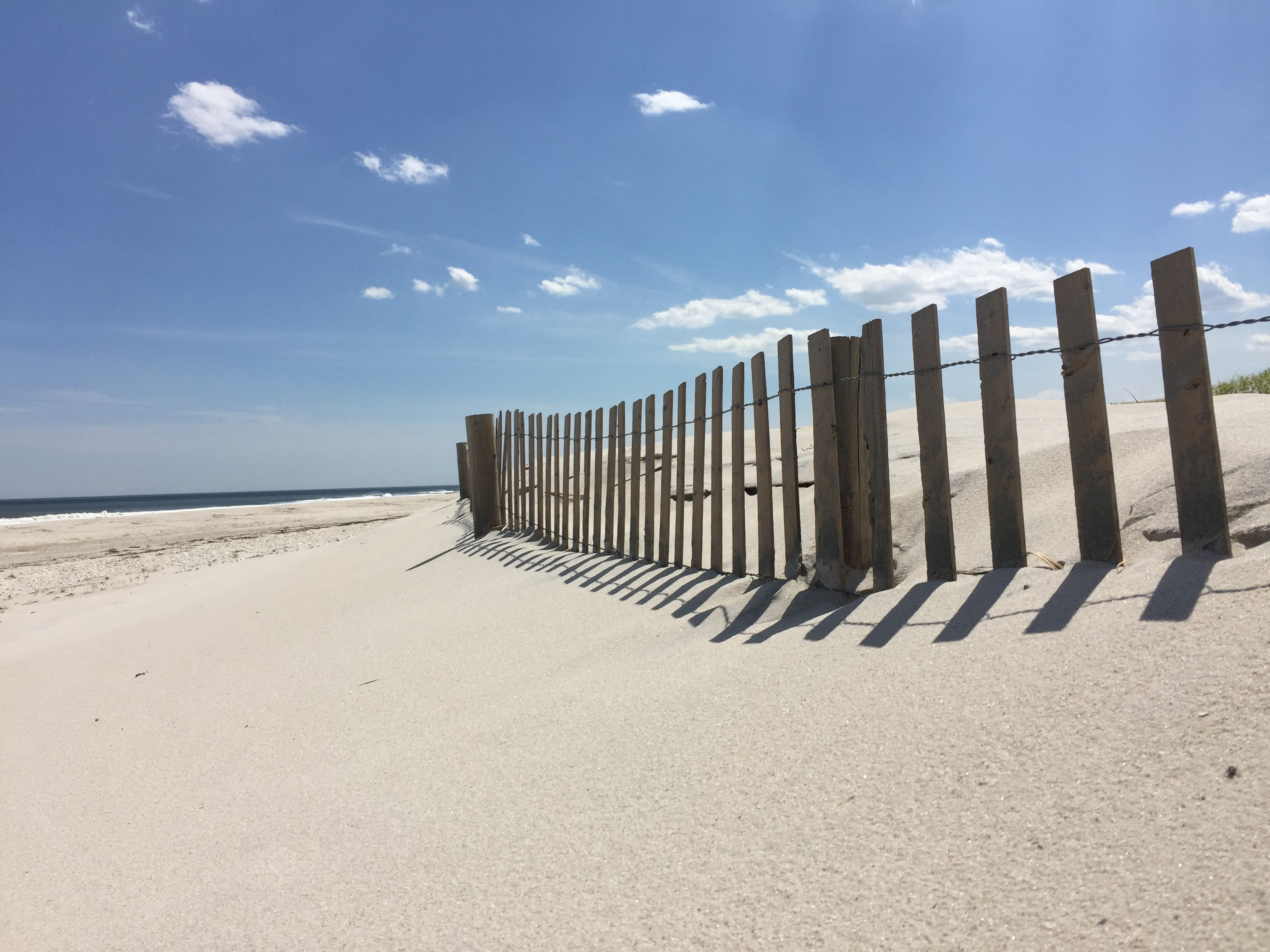 Bayfront Sales Update on Long Beach Island