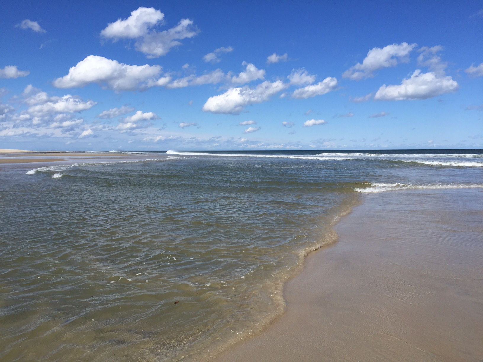 New Long Beach Island Real Estate Listing Activity