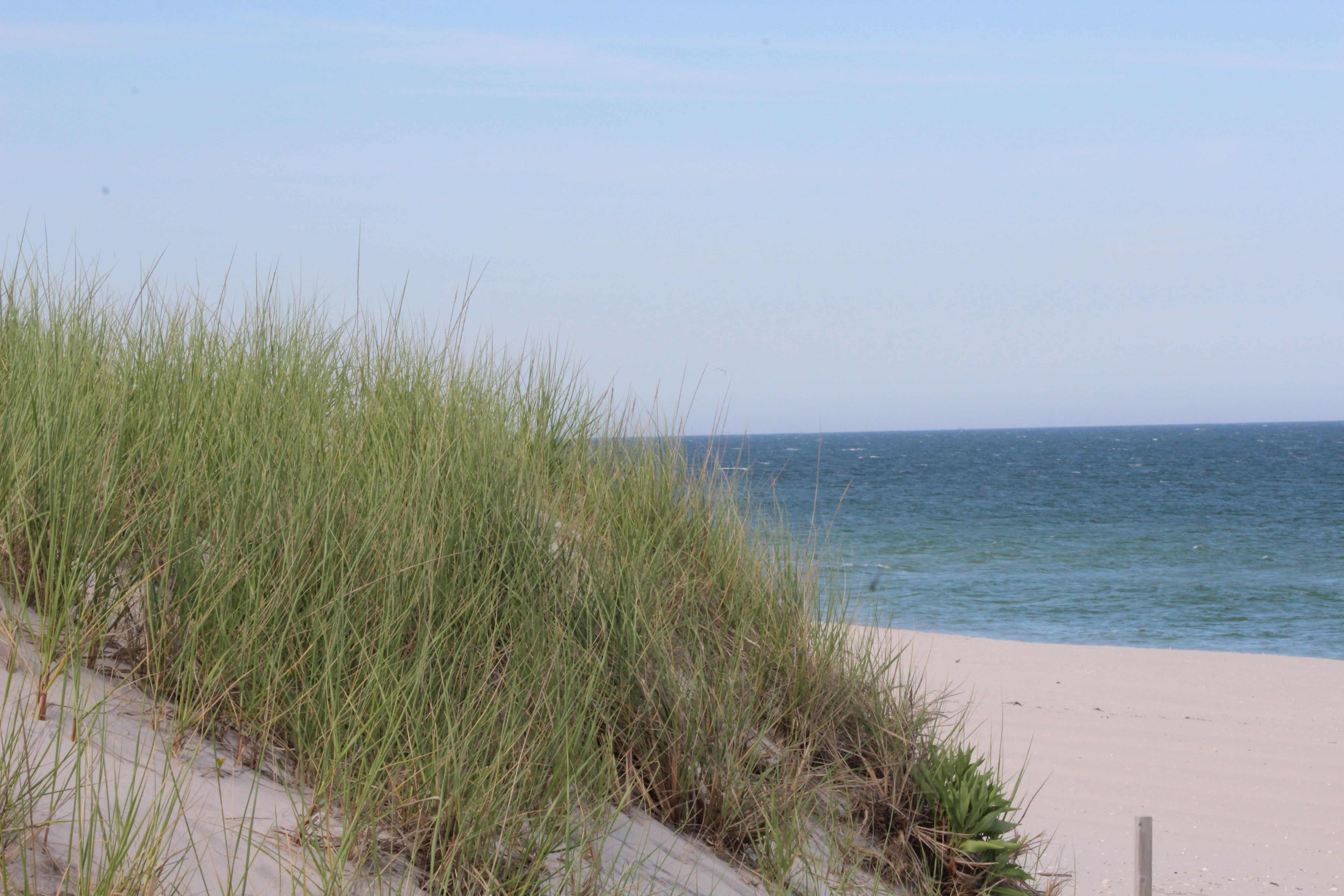 Making Offers in the LBI Real Estate Market