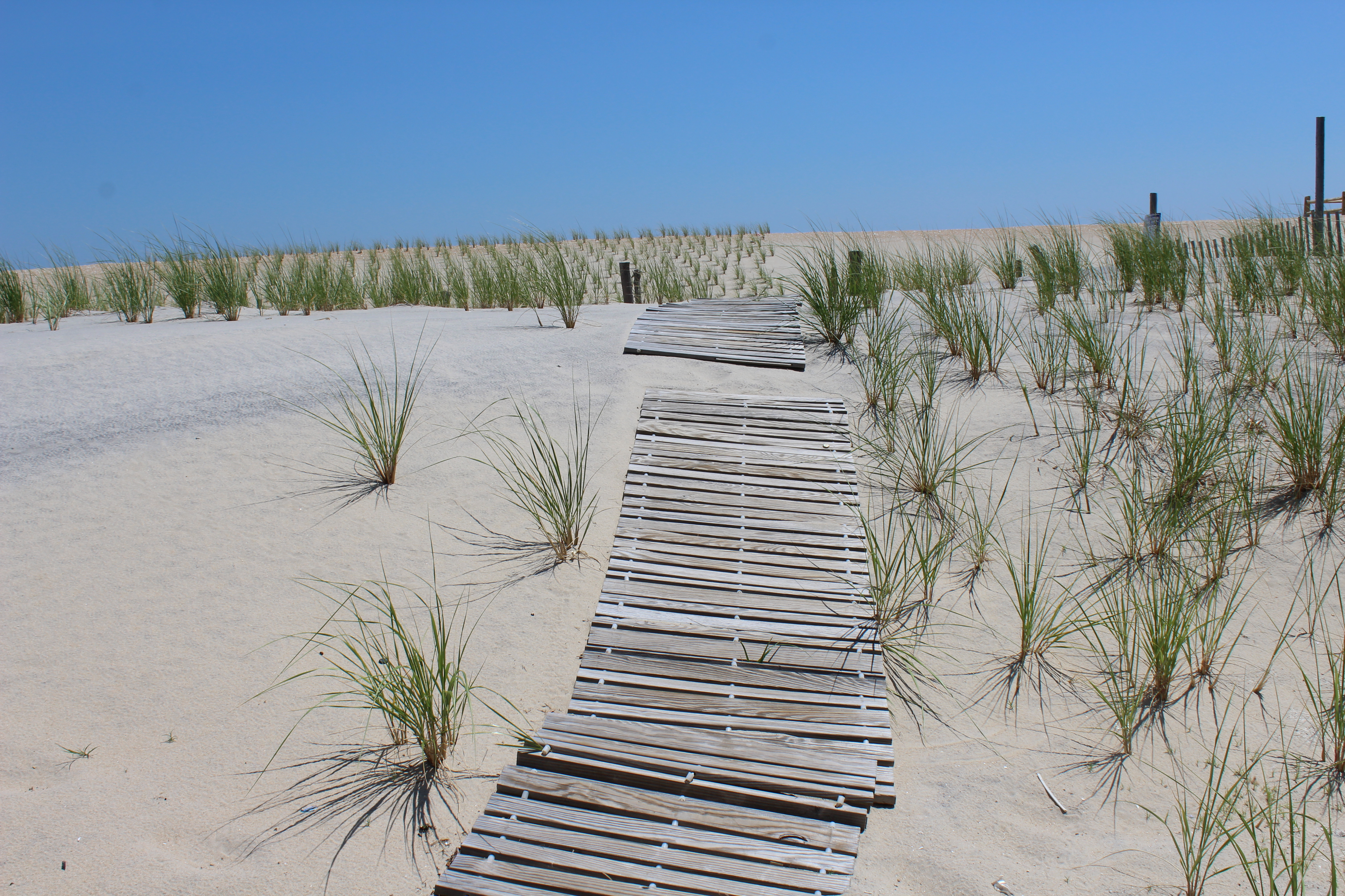Tax Law and LBI Real Estate Market Predictions