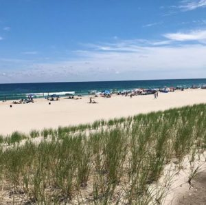 Landscape Tips to Find Buyers in the LBI Real Estate Market