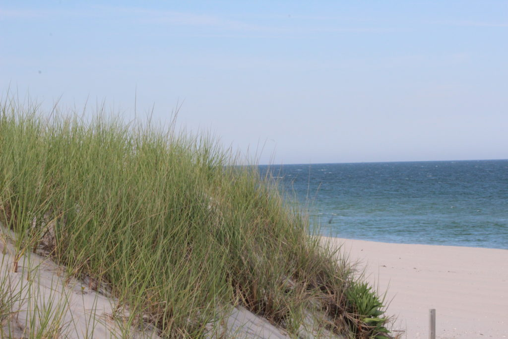 Active Listings in the LBI Real Estate Market