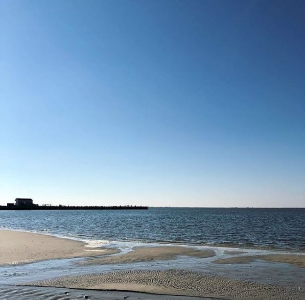 Brant Beach Real Estate 2017 Sales