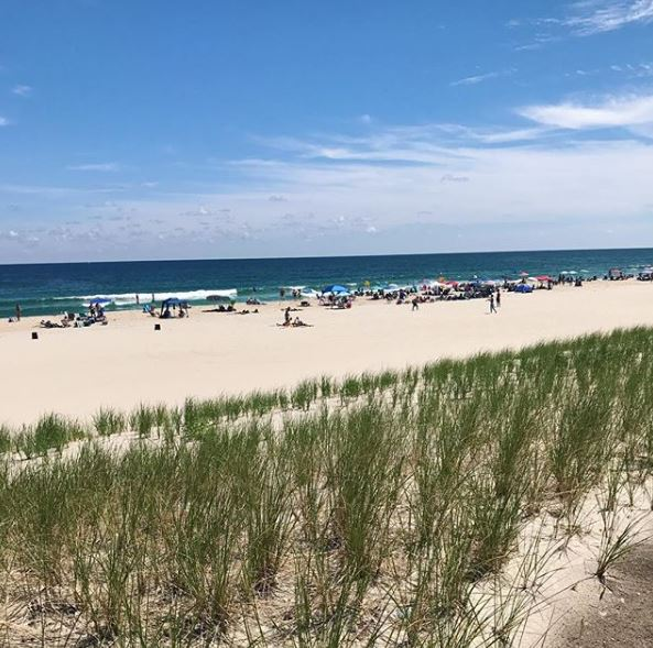 LBI Real Estate Sales Contract
