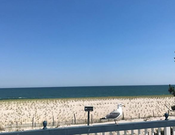 LBI Real Estate Market Appreciation