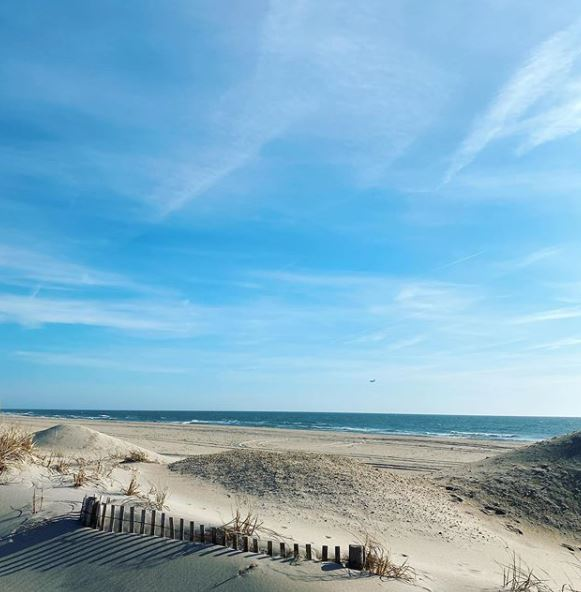 LBI Real Estate Daily Market Update March 25th 2020