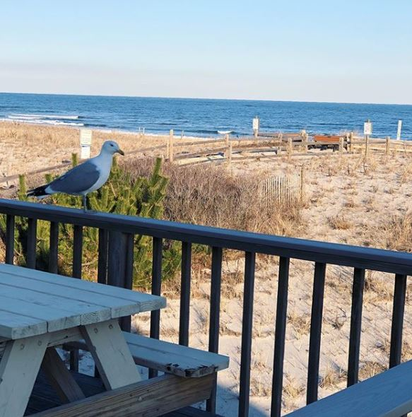 Buying LBI Real Estate in a Flood Zone