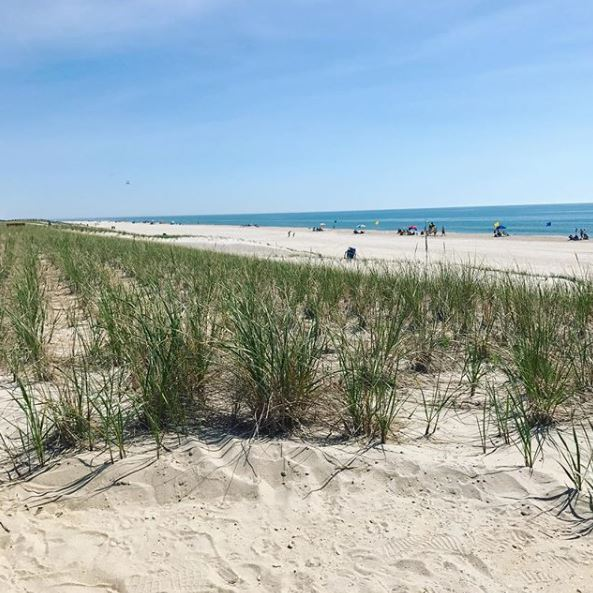 LBI Real Estate Daily Market Update April 18th 2020