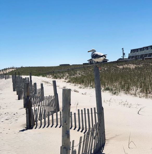 LBI Real Estate Mortgage Buydown