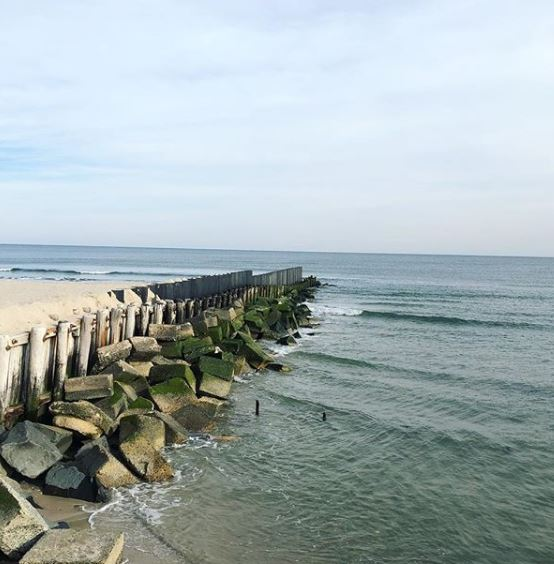 LBI Real Estate Weekly Sales Update  11/1/2020-11/8/2020