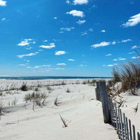 LBI Real Estate Daily Market Update January 23rd, 2021